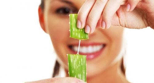 Cách làm trắng răng với cây nha đam tại nhà